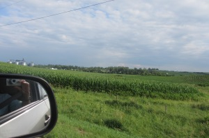 corn, we saw lots of it