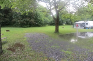 It rained a hell of a lot, guess that's why upper New York is so green